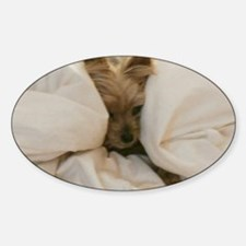 Yorkie Sleepy Decal
