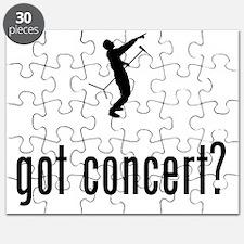 Singer-02-02-A Puzzle