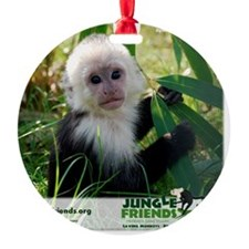 Baby Dylan Ornament