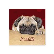 "Adorable iCuddle Pug Puppy Square Sticker 3"" x 3"""