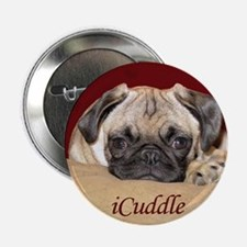 "Adorable iCuddle Pug Puppy 2.25"" Button"