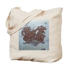 Plaster and Brick Grunge Shower Curtain B Tote Bag