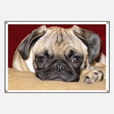 Adorable iCuddle Pug Puppy Banner