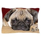 Dogs Pillow Cases