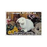 Valuable Pet Lesson #8 Rectangle Magnet