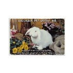 Valuable Pet Lesson #8 Rectangle Magnet (10 pack)