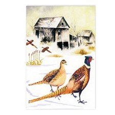 Pheasants at the Farm Postcards (Package of 8)