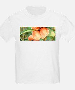 Protect Our Freedom of Peach T-Shirt
