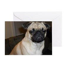 Stink eye pug Greeting Card