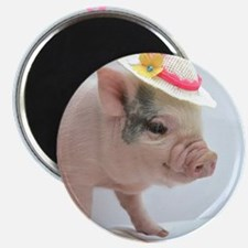 Micro pig with Summer Hat Magnet