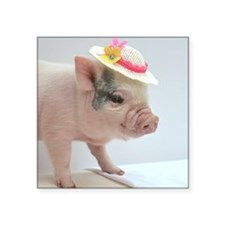 """Micro pig with Summer Hat Square Sticker 3"""" x 3"""""""