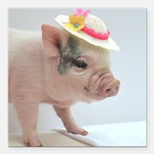 """Micro pig with Summer Ha Square Car Magnet 3"""" x 3"""""""
