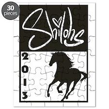 2013 Logo Puzzle