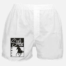 2013 Logo Boxer Shorts