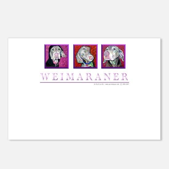 Weimaraner Trio Postcards (Package of 8)