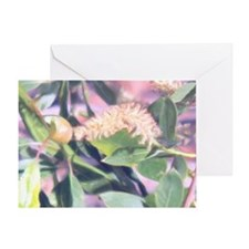 Pink Weed Greeting Card