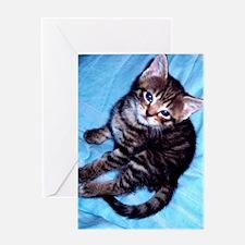 Cute Tabby Kitten Looking up for lov Greeting Card