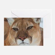 Big Face Animal - Panther Greeting Card