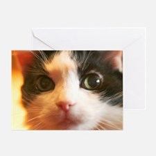 Big Face Animal - Black and White Ca Greeting Card