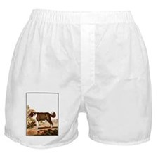 Dog (Icelandic Sheepdog) Boxer Shorts