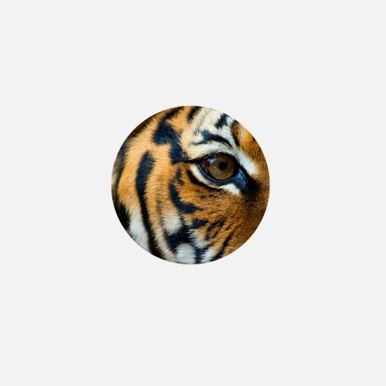 Eye of Tiger Mini Button