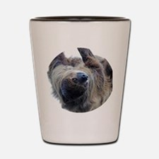 Sloth Round Cocktal Plate Shot Glass