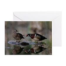 Wood Duck Pair on Log Greeting Card