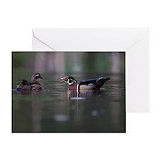 Wood Ducks on Pond Greeting Card
