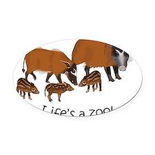 Red river hog family - light Oval Car Magnet