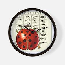 WWLadybug©jwf Wall Clock