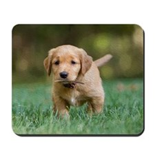 Puppy-Golden Retriever Mousepad