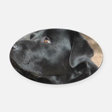 """""""Turbo  The  Great"""" Oval Car Magnet"""