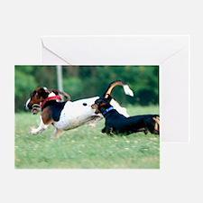 Dachshund chasing Basset Hound Greeting Card
