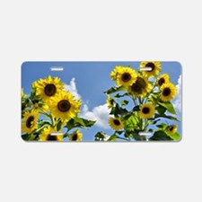 Sunflowers and Sky Aluminum License Plate