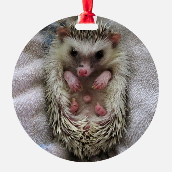 .bathtime hedgie. Ornament