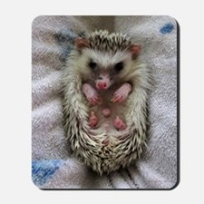 .bathtime hedgie. Mousepad
