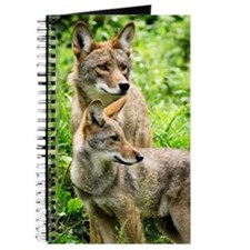 Coyote Photograph Journal