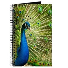 Peacock Bird Journal