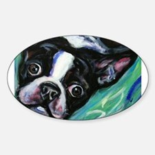 Boston Terrier eyes Decal