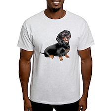 Dachshund-BT - Big2 T-Shirt