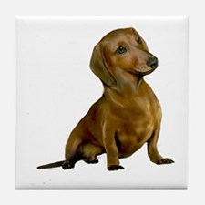 Brown / Red Dachshund Tile Coaster