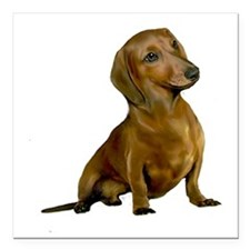 "Brown / Red Dachshund Square Car Magnet 3"" x 3"""