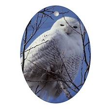 Snowy White Owl, Blue Sky Oval Ornament