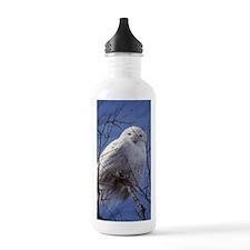 Snowy White Owl, Blue  Water Bottle