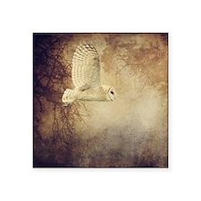 "Barn Owl Square Sticker 3"" x 3"""