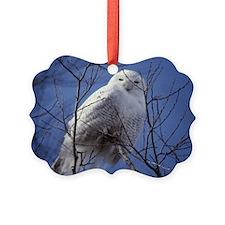 Snowy White Owl, Blue Sky Ornament