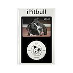 iPitbull Rectangle Magnet (10 pack)
