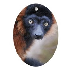 Red Ruffed Lemur Serving Tray Oval Ornament