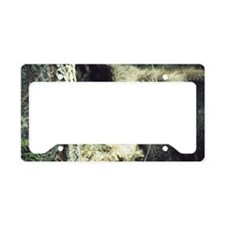 """""""Young  Black  Wolf"""" License Plate Holder"""