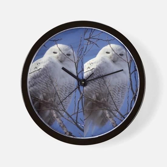 Snowy White Owl, Blue Sky Wall Clock